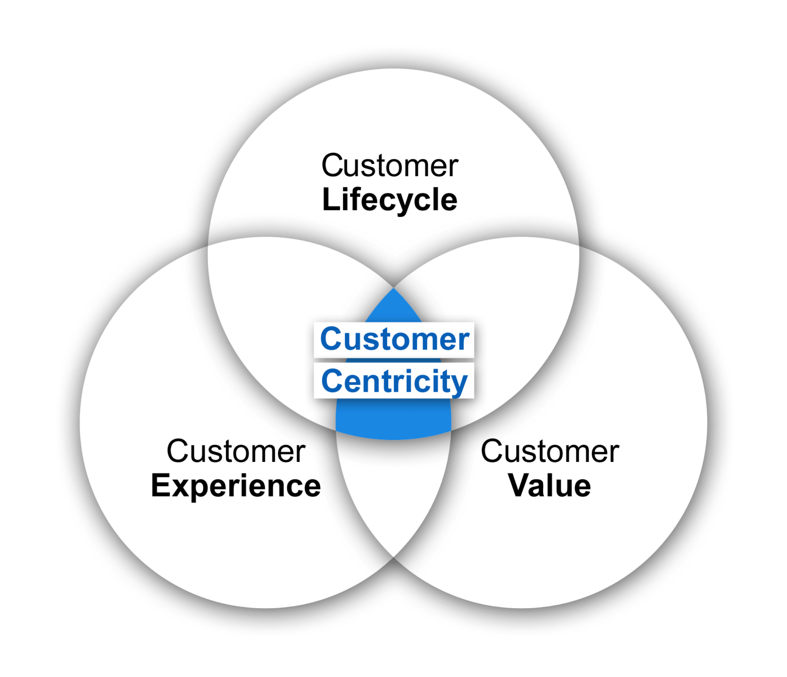 Customer Centricity model