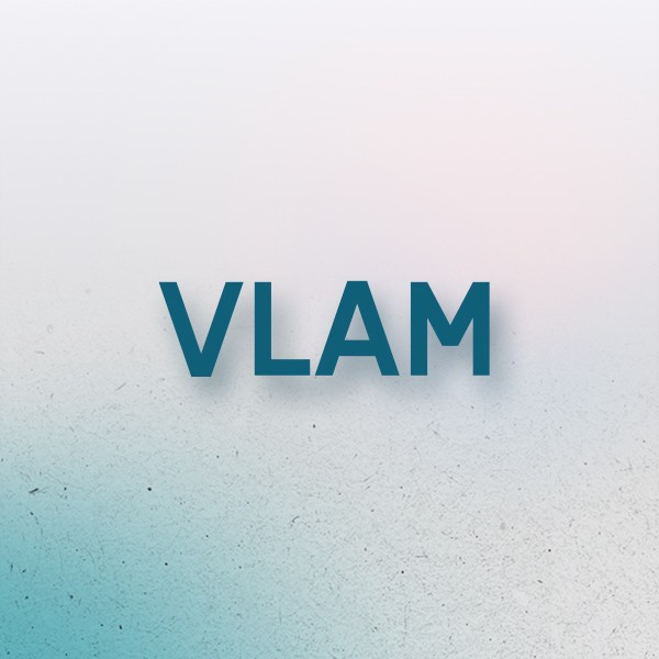 VLAM by InSites Consulting